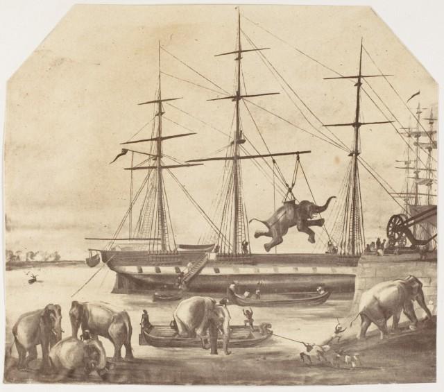 Высадка груза из семидесяти слонов из Бирмы во время восстания 1857 года
