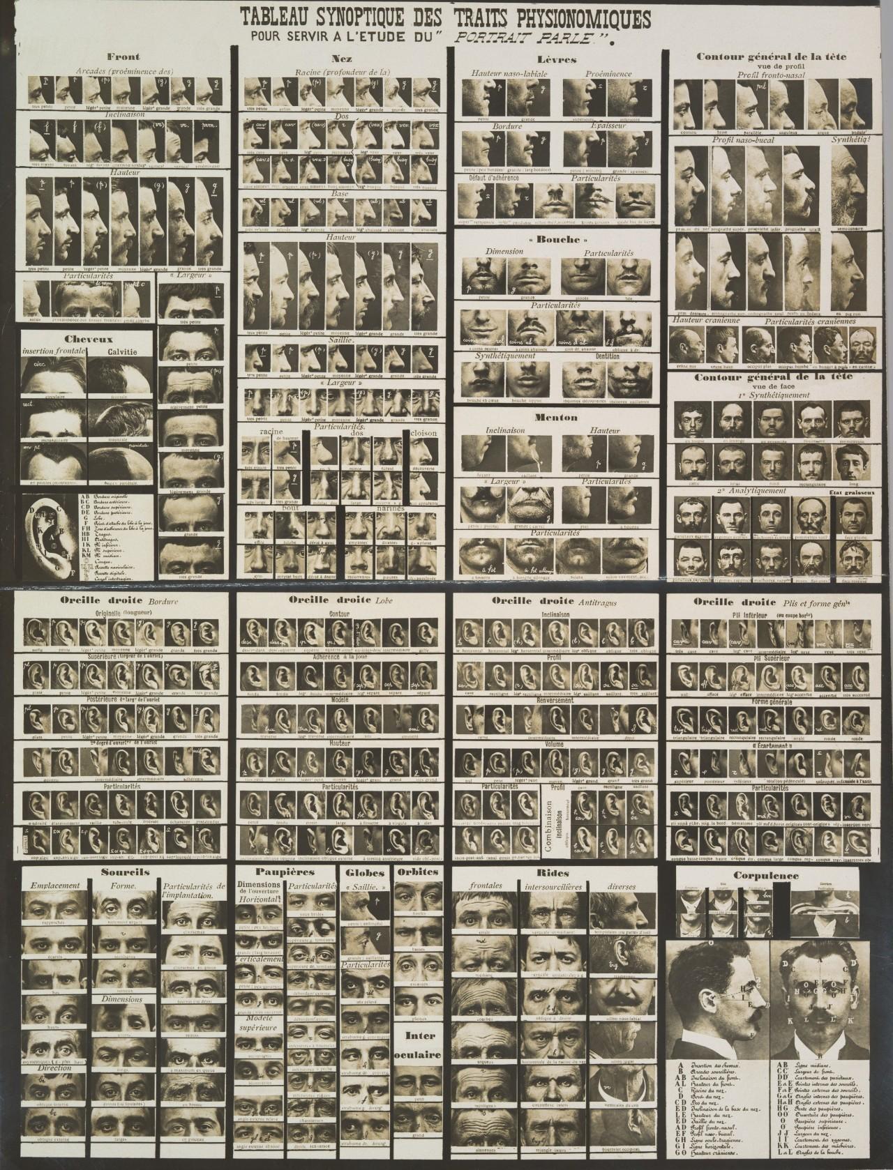 Сводная таблица физиогномических черт для изучения «разговорного портрета» в криминалистике, 1909. Автор Альфонс Бертильон