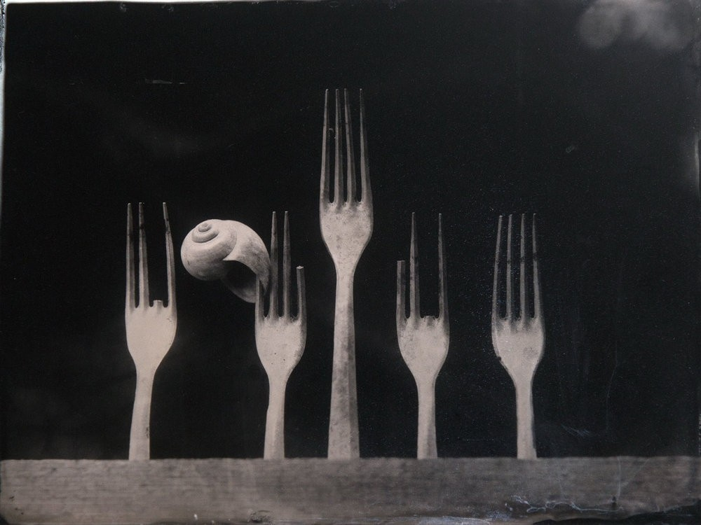 Поощрительная премия, 2019. «Пропавшие зубцы». Автор Ян Шперка