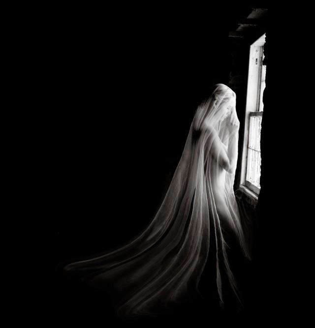 Женщина в вуали у окна. Авторы Тревор и Фэй Йербери