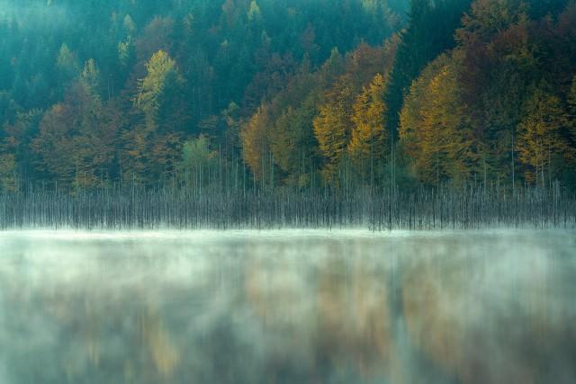 Победитель в категории «Премия Фреда Хазельхоффа» (5). Озеро Куеждел. Автор Георге Попа