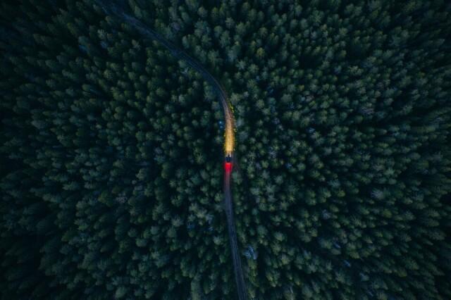 Финалист в номинации «Россия с высоты птичьего полёта», 2021. «Сквозь лесную чащу». Автор Камиль Нуреев