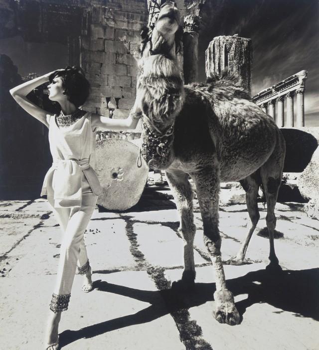 Дороти Макгоуэн с верблюдом, Баальбек, 1961 год. Фотограф Уильям Кляйн