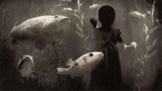 Из проекта «Ни здесь, ни там». Автор Дженнифер Шлезингер (12)
