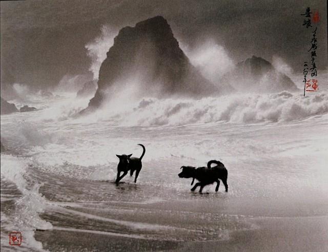 Игра в волнах, 1982. Автор Дон Хонг-Оай
