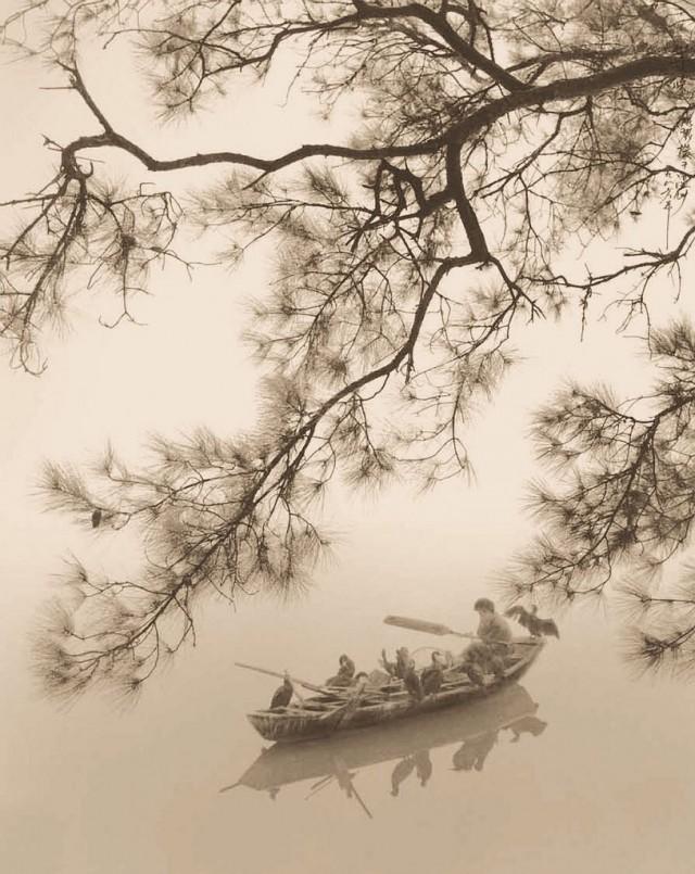 Рыбалка с бакланами. Автор Дон Хонг-Оай