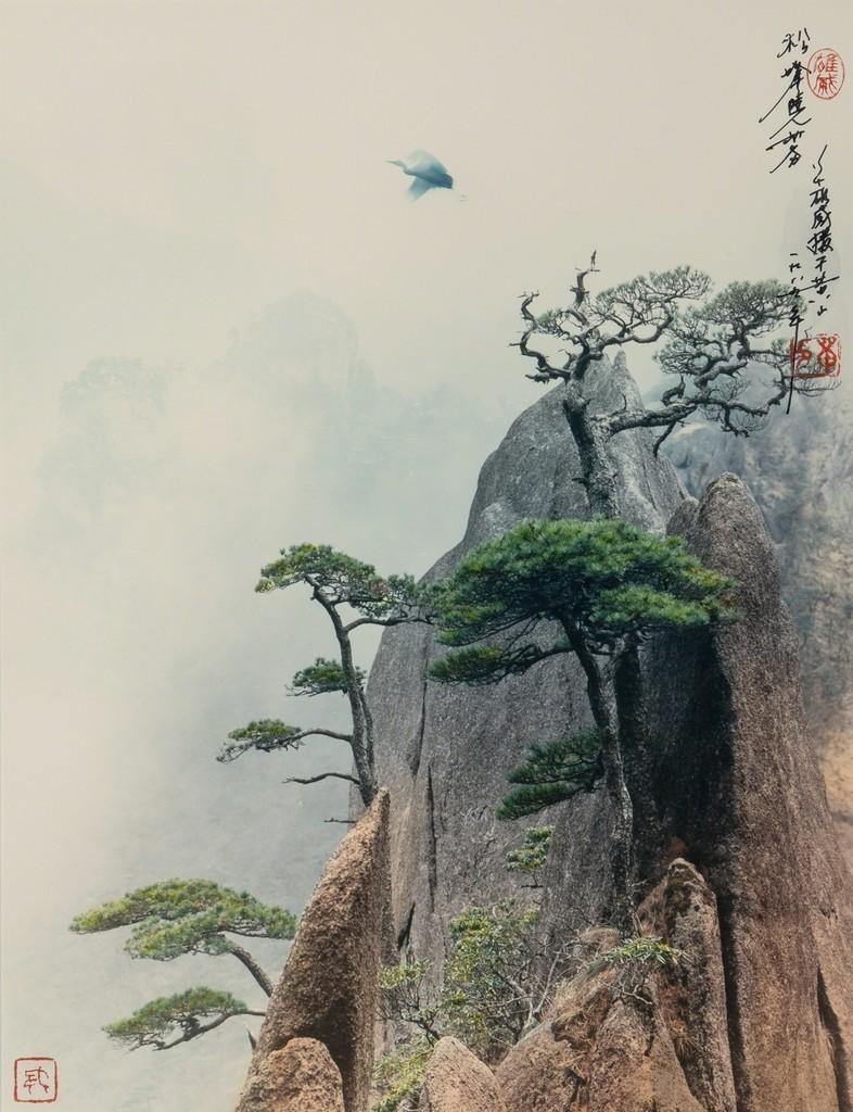 Сосновый пик, Жёлтые горы, 1984. Автор Дон Хонг-Оай
