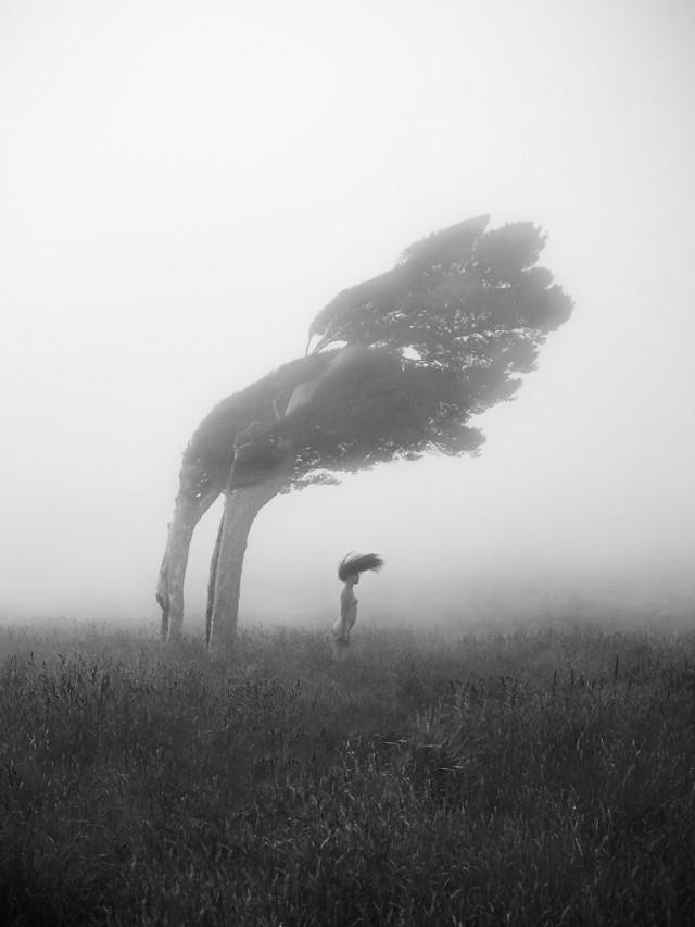 Победитель в категории «Природа – земля», 2020. Автор Себастьен Руаньян