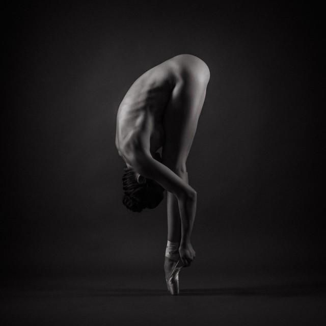 Финалист в категории «Танец». Автор Боян Радичевич, Квебек, Канада