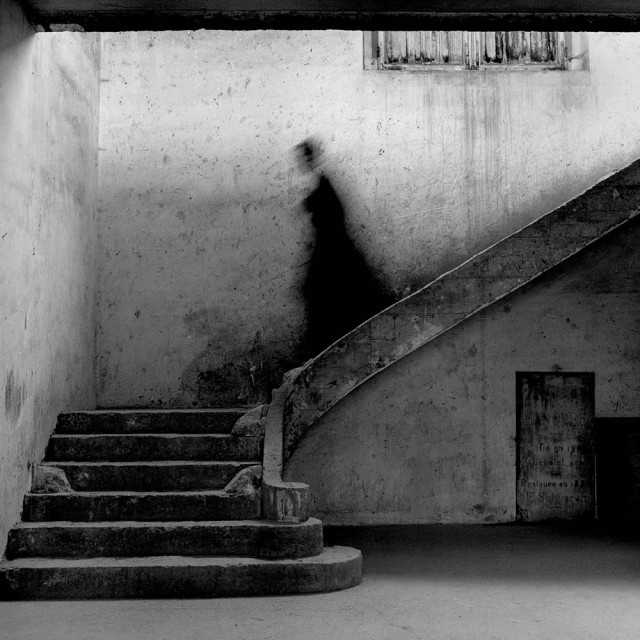 Парк де Со, Франция, 1995. Автор Родни Смит