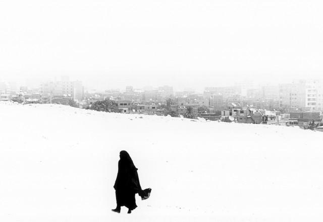 Зима. Автор Уолтер Ротуэлл
