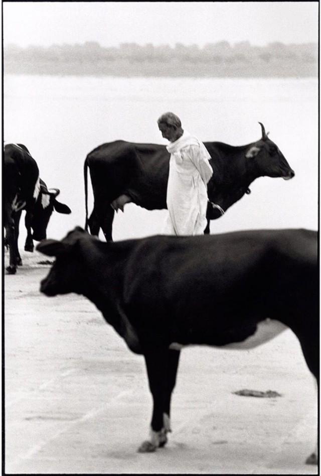 Утренняя прогулка, Варанаси, Индия. Автор Уолтер Ротуэлл