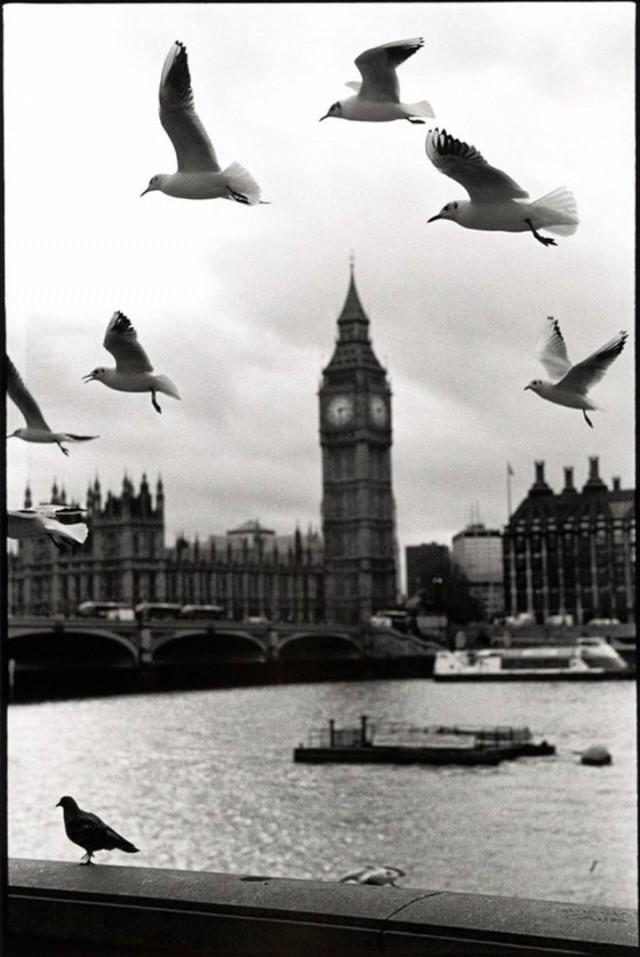 Биг-Бен, Лондон. Автор Уолтер Ротуэлл
