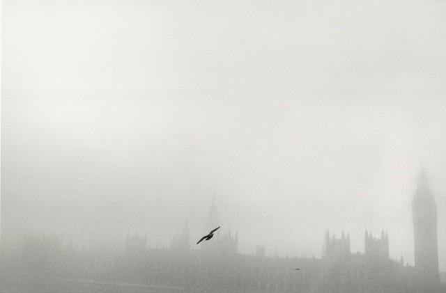 Вестминстерский дворец в тумане, Лондон. Автор Уолтер Ротуэлл