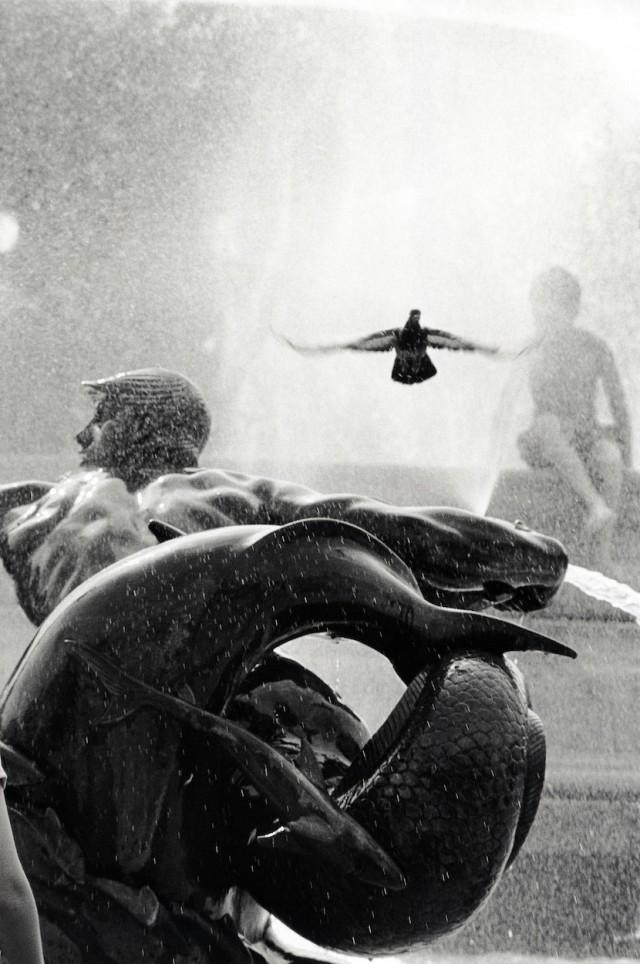 Фонтан на Трафальгарской площади, Лондон. Автор Уолтер Ротуэлл