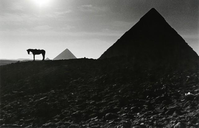 Пирамиды Гизы на закате солнца. Автор Уолтер Ротуэлл
