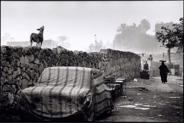 Раннее утро в Исламском Каире. Автор Уолтер Ротуэлл