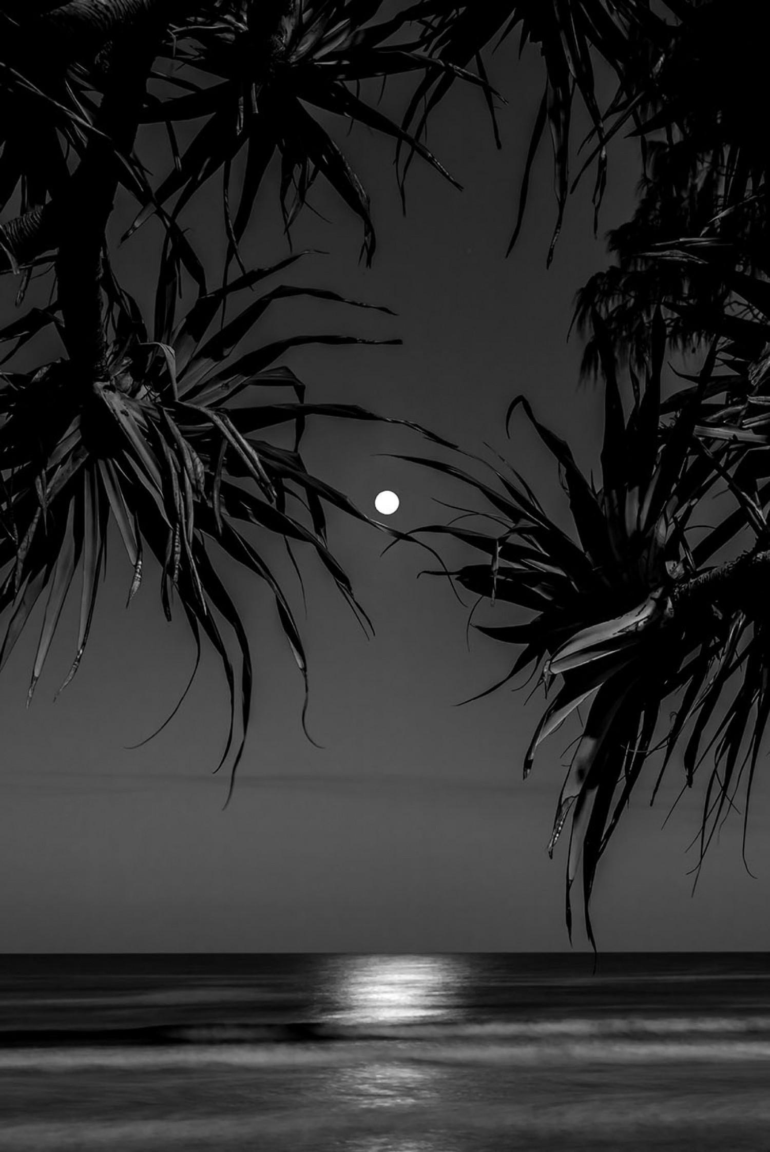«Очарование ночи». Финалист в категории «Пейзаж и природа», 2020. Автор Аз Джексон