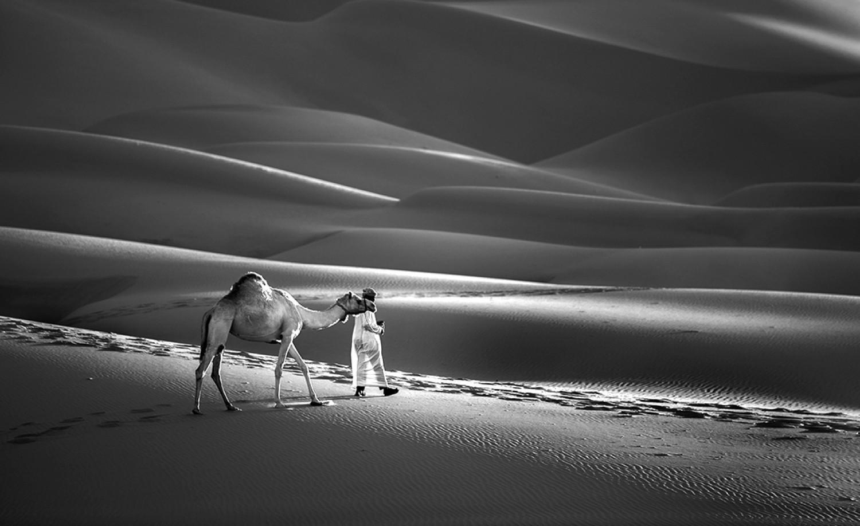 «Пустыня Лива в ОАЭ». Финалист в категории «Люди и животные», 2020. Автор Бахаадин Аль-Казвини
