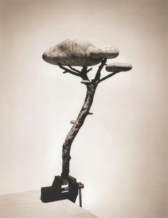 Каменный бонсай, 2000. Автор Чема Мадоз