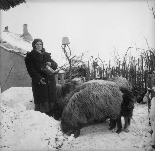 Архив сельского фотографа Захарии Кушнира (57)