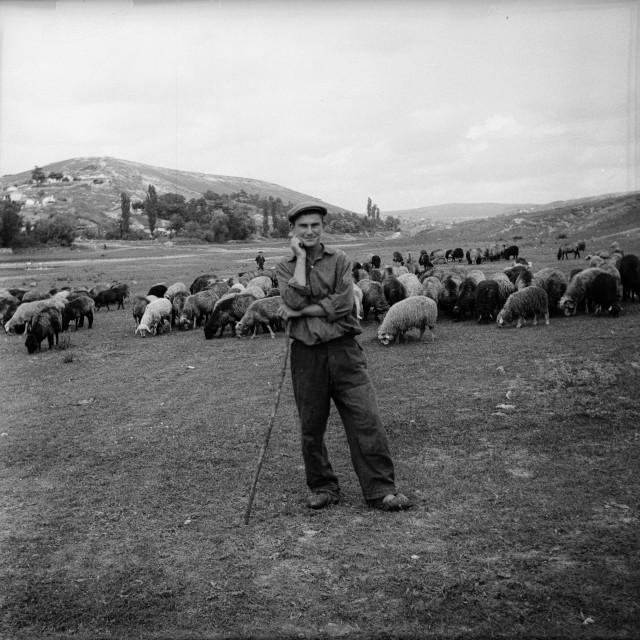 Архив сельского фотографа Захарии Кушнира (23)