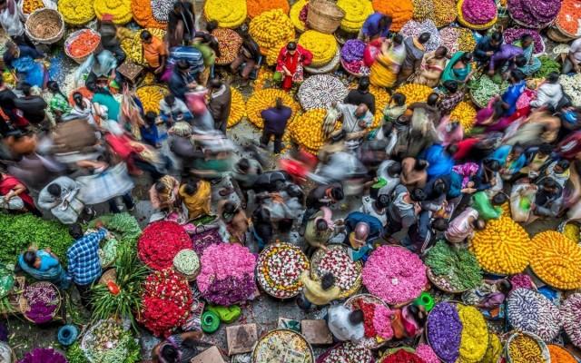 1-е место в категории «Цвета жизни», 2020. Оживлённый рынок в Бангалоре, Индия. Фотограф Питер Уолмсли