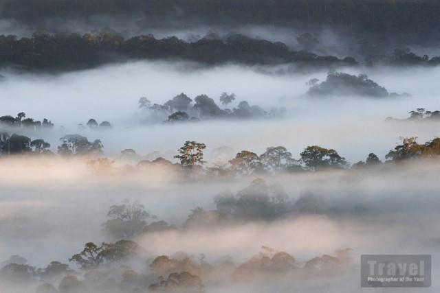 Облака и деревья в долине Данум на Борнео в Малайзии. Победитель в категории «Юный туристический фотограф года» 15-18 лет, 2019. Автор Анкит Кумар (16 лет)