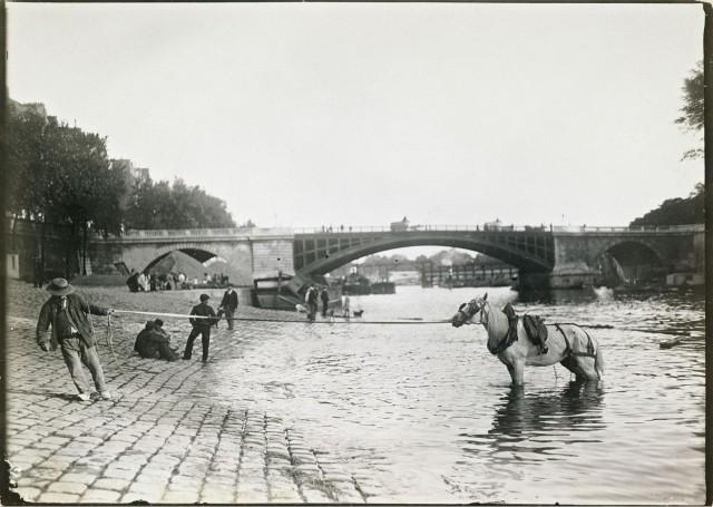 Купание лошадей в Сене у моста Сюлли, Париж, 1895-1905. Автор Поль Женью (Paul Géniaux)