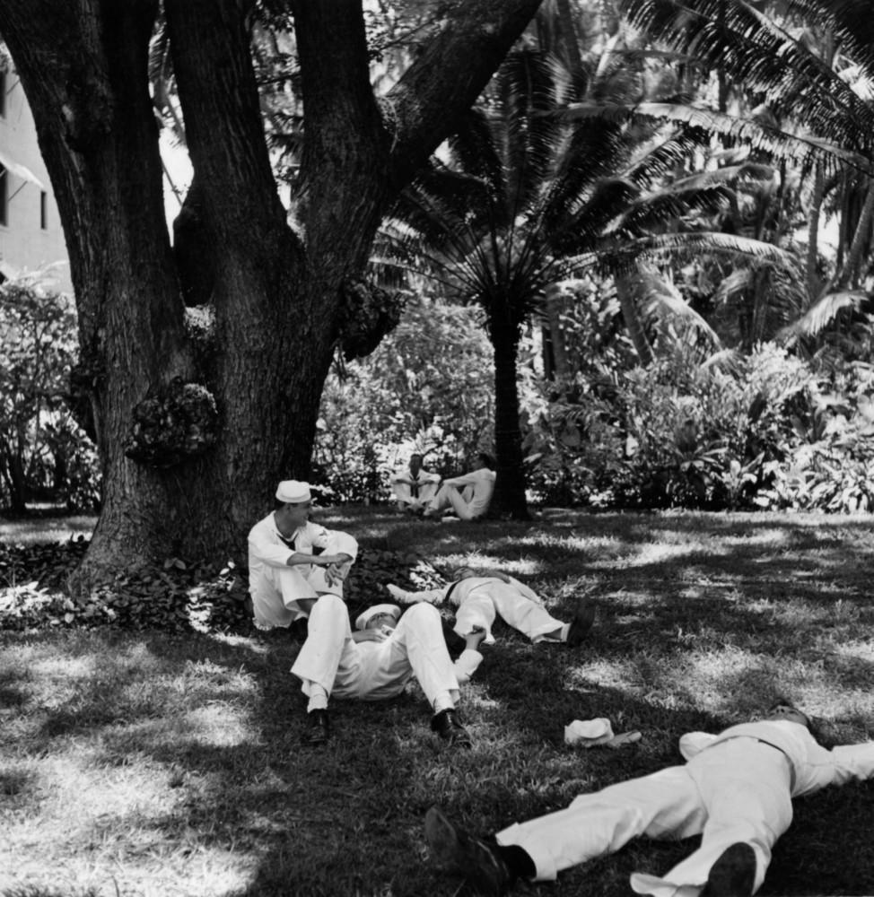 На лужайке Royal Hawaiian Hotel. Автор Уэйн Миллер