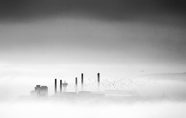 «Зимнее хайку». Автор Андрей Бачу (31)