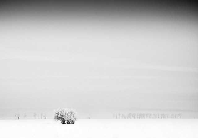 «Зимнее хайку». Автор Андрей Бачу (33)