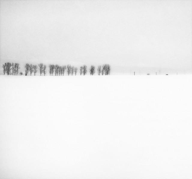 «Зимнее хайку». Автор Андрей Бачу (28)