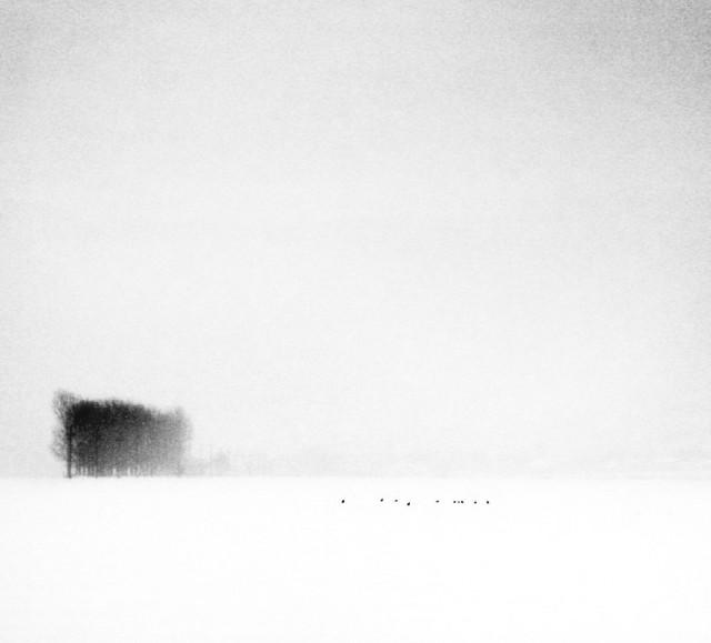 «Зимнее хайку». Автор Андрей Бачу (9)