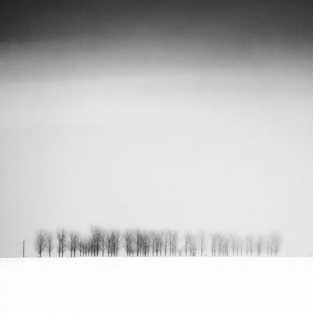 «Зимнее хайку». Автор Андрей Бачу (11)