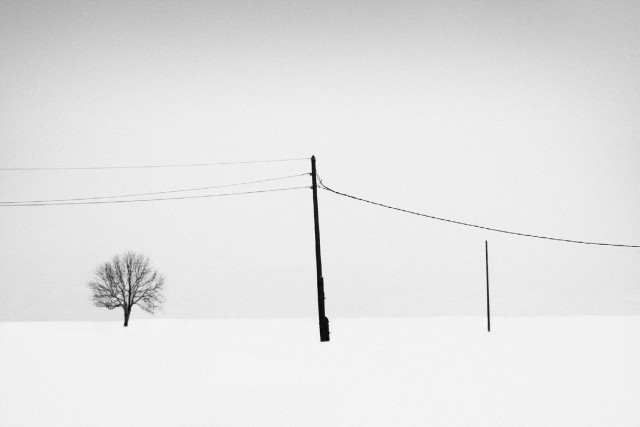 «Зимнее хайку». Автор Андрей Бачу (15)