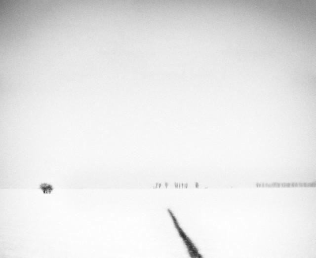 «Зимнее хайку». Автор Андрей Бачу (16)