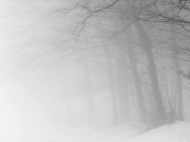 «Зимнее хайку». Автор Андрей Бачу (17)