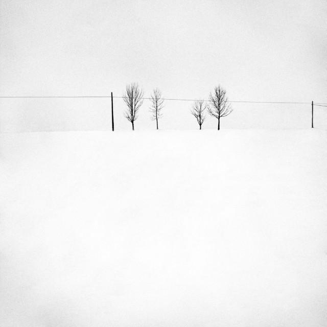 «Зимнее хайку». Автор Андрей Бачу (20)