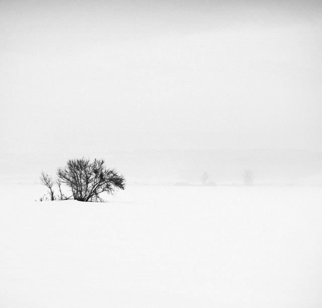 «Зимнее хайку». Автор Андрей Бачу (21)