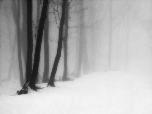 «Зимнее хайку». Автор Андрей Бачу (2)
