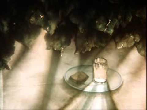 Сказка сказок, 1979