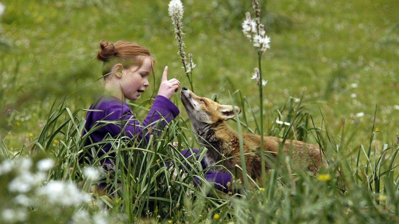«Девочка и лисёнок»: мир глазами другого существа