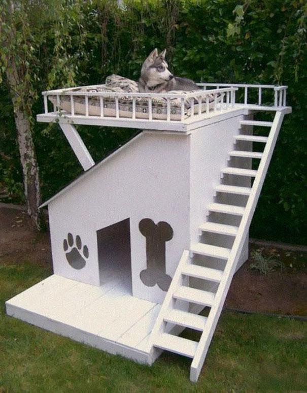 Дом для собаки
