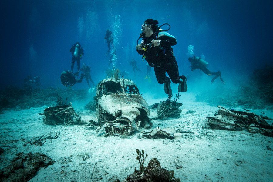 является символом подводное фото затонувших кораблей дверь, как вообще