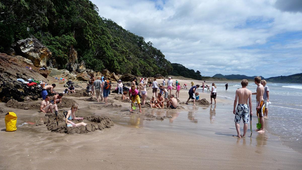 Пляж Горячей воды - Новая Зеландия