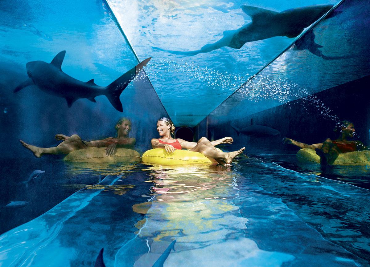 Aquaventure, Багамские острова