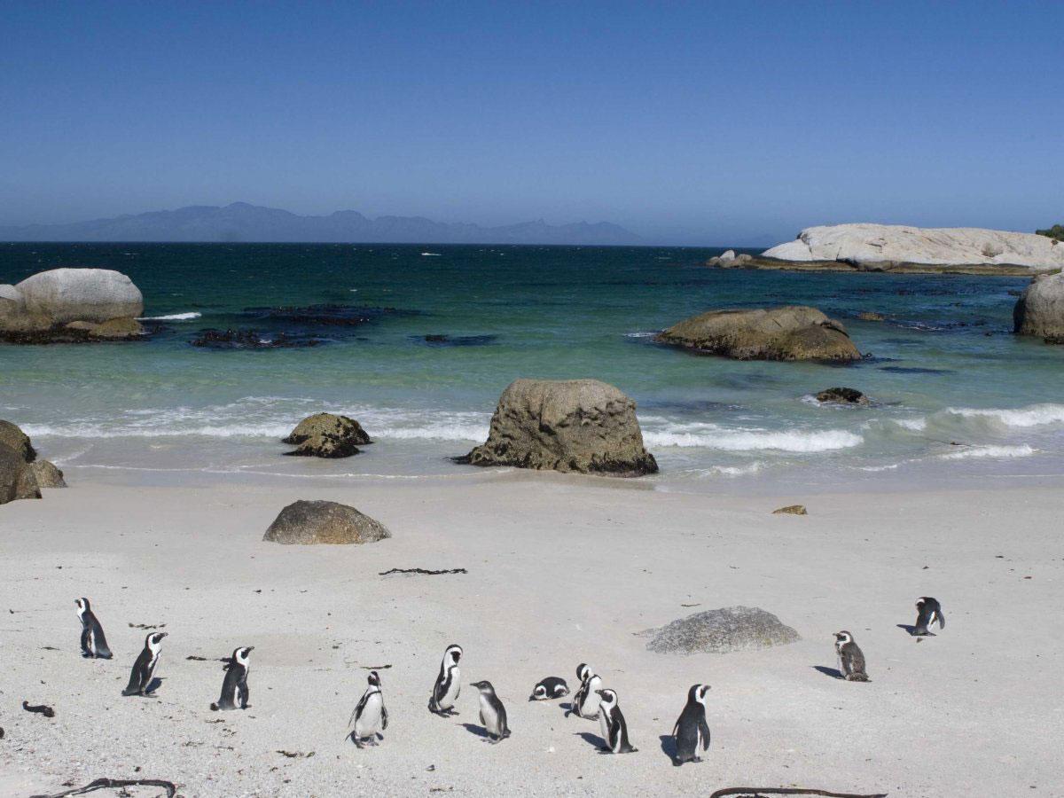 Пляж Фокси - Кейптаун, Южная Африка