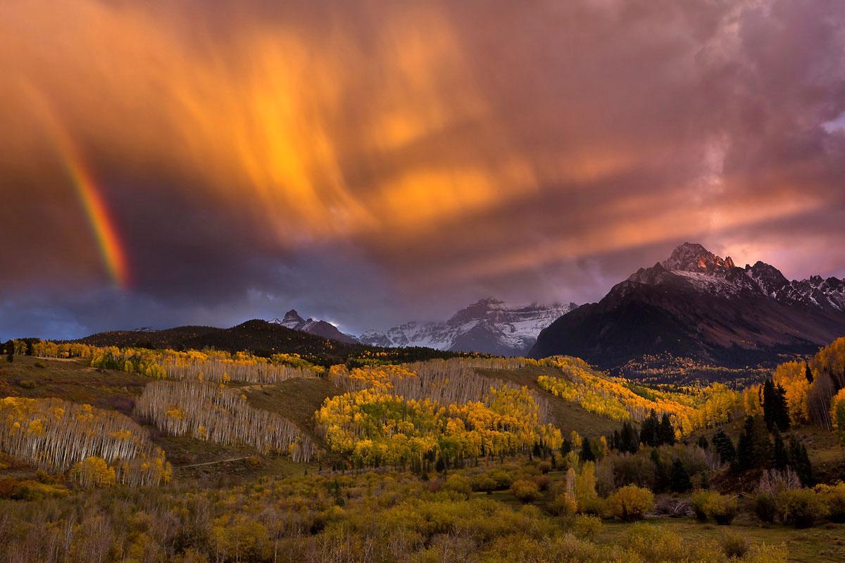 более дикая природа фото пейзаж все