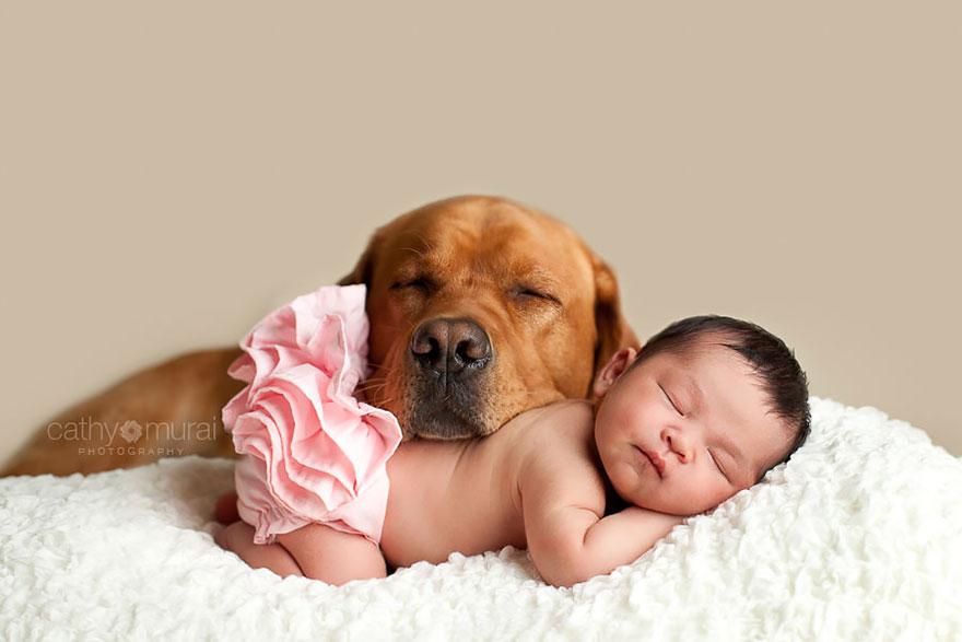 Когда собаки большие, а дети маленькие - 44 потрясающие фотографии - 17